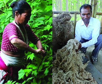 artisan ortie himalaya karawan
