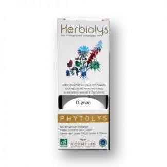 oignon bio phyto