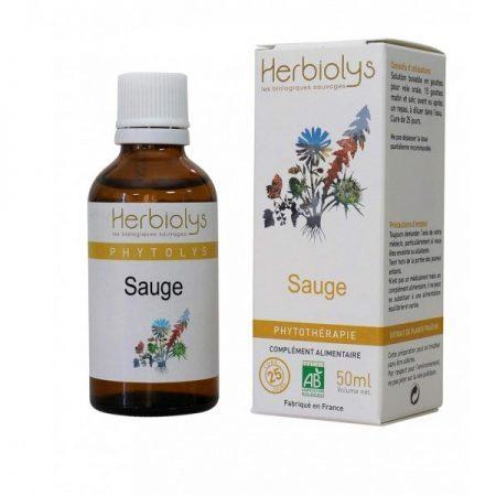 sauge bio phyto