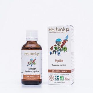 bourgeons myrtillier extrait de plante fraiche bio gemmothérapie