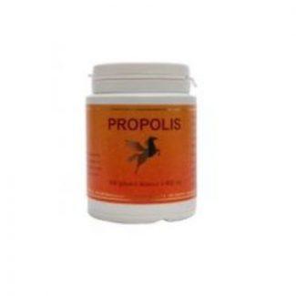 propolis brune