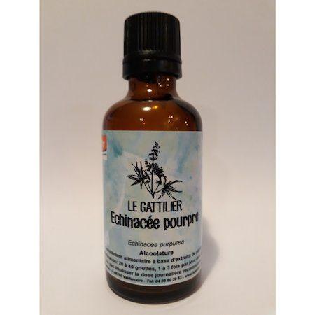 alcoolature echinacee pourpre extrait de plante biodynamique
