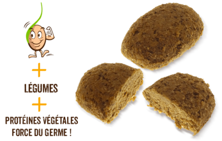 galettes-de-cereales-germes-haricots-blancs-tomate-gaia-reponsesbio