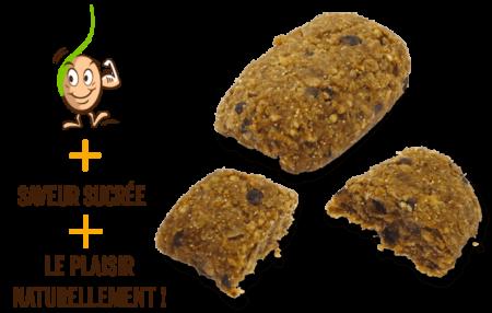 galettes-de-cereales-germes-multigrains-gaia-reponsesbio