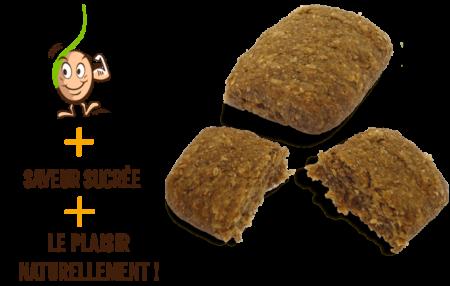 galettes-de-cereales-germes-raisins-gaia-reponsesbio