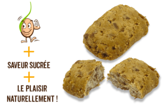 galettes-de-cereales-germes-sarrasin-gaia-reponsesbio