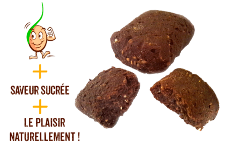galettes-vegan-sarrasin-germe-choco-gaia-reponsesbio