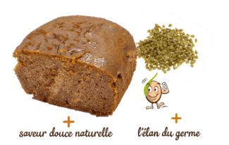 pain-aux-epices-miel-300g-gaia-reponsesbio