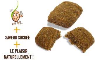 galettes-de-cereales-germes-banane-gaia-reponsesbio