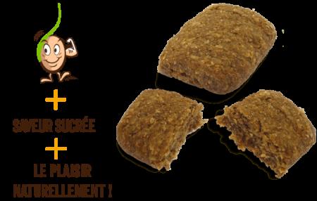 galettes-de-cereales-germes-figues-gaia-reponsesbio